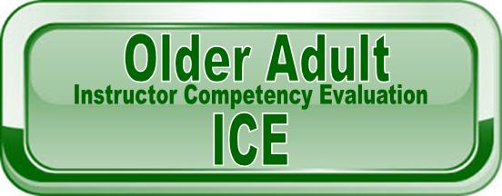 Older Adult ICE